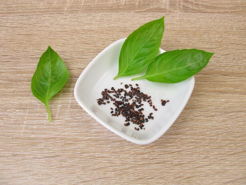 Basil seeds and basil leaves stock photo