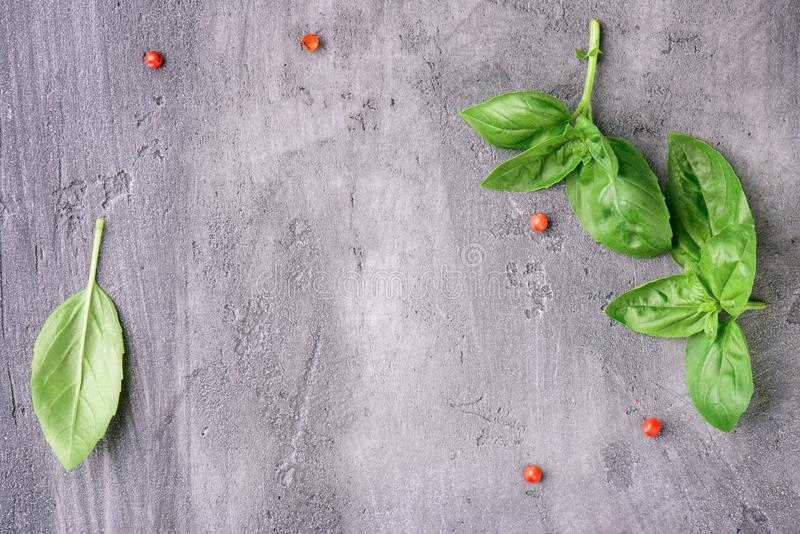 Basil sprigs on a concrete surface stock image