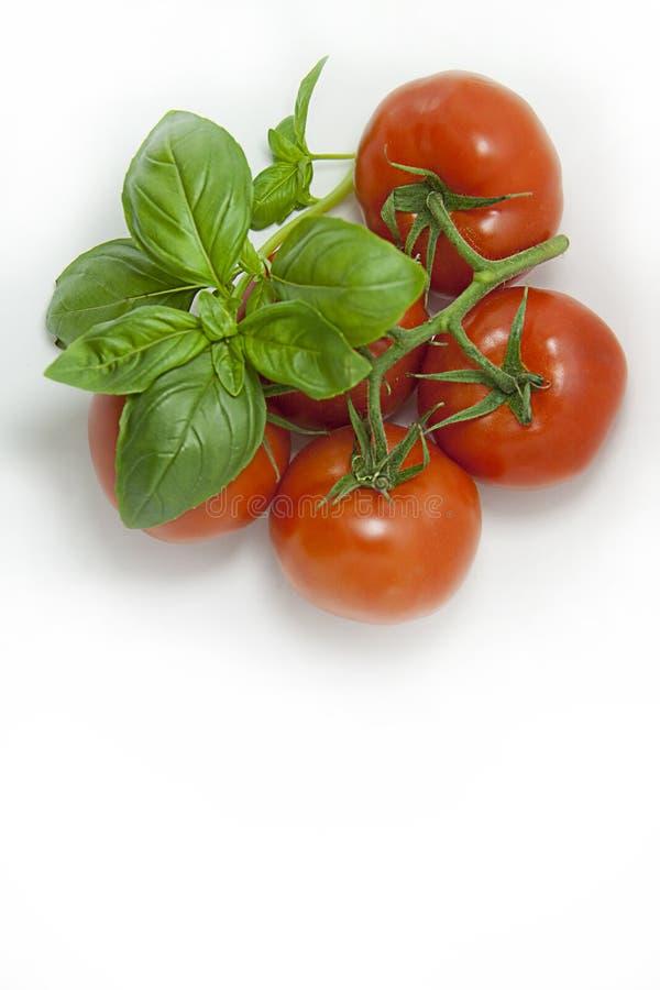 Basil & tomatoes, portrait stock photos