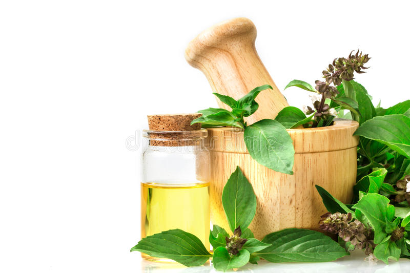 basil in wooden mortar with essential oil , alternative herbal royalty free stock images