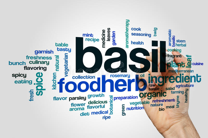 Basil word cloud. Concept on grey background royalty free stock photos
