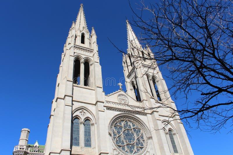 Basilica della cattedrale dell'immacolata concezione fotografia stock libera da diritti