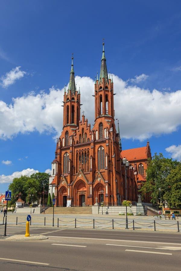 Basilica i Bialystok royaltyfri bild