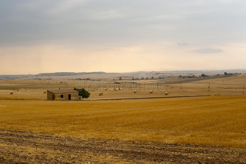Basilicata (Matera) - Farm at summer stock photos