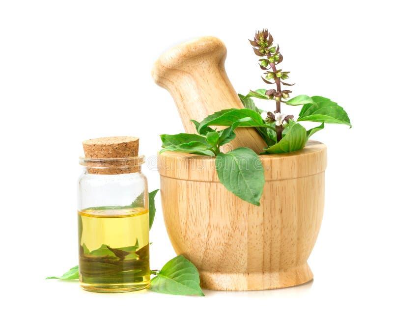 basilico in mortaio di legno con olio essenziale, alternativa di erbe fotografia stock