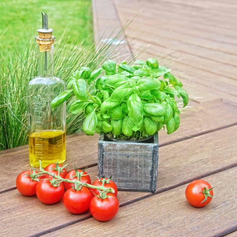 Basilika, olivolja och tomater arkivfoton