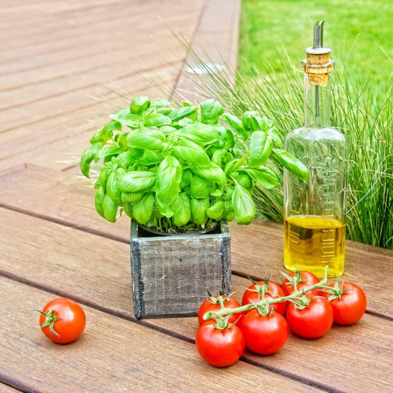 Basilika, olivolja och tomater, italienskt medelhavs- matbegrepp för sommar royaltyfri fotografi