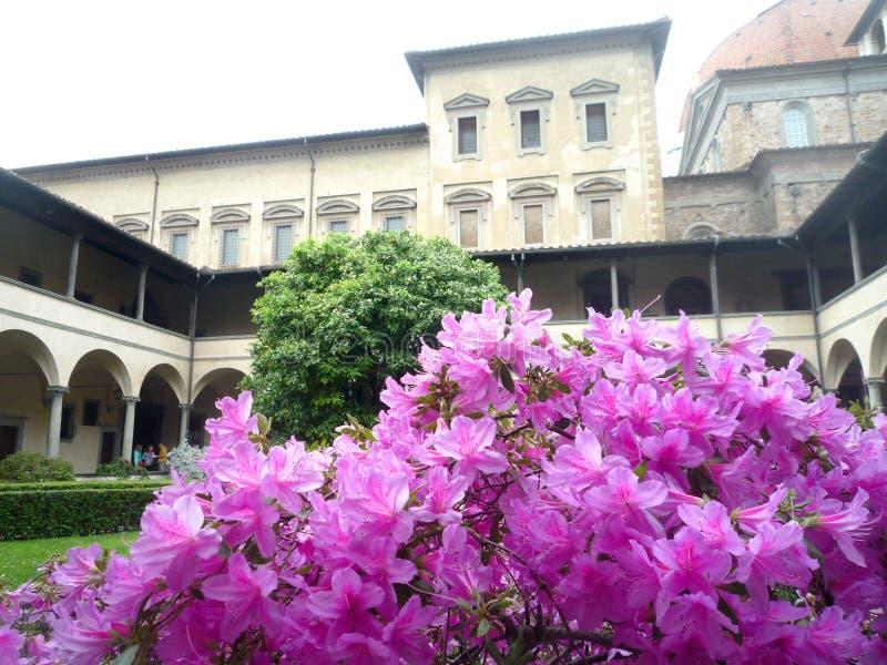 Basilika San Lorenzo, Firenze, Italien, April 21 2019, sikt av Chiostroen med azaleablommor på förgrund royaltyfri foto