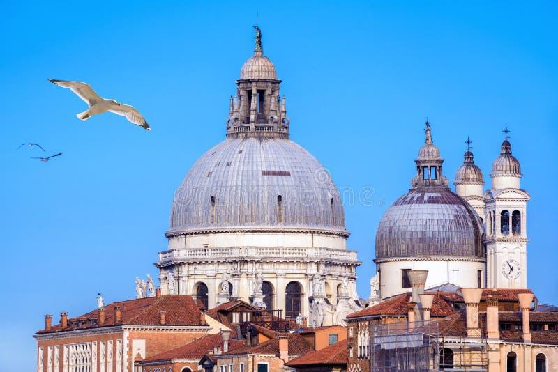 Basilikadi Santa Maria della Salute, Venedig, Italien royaltyfri bild