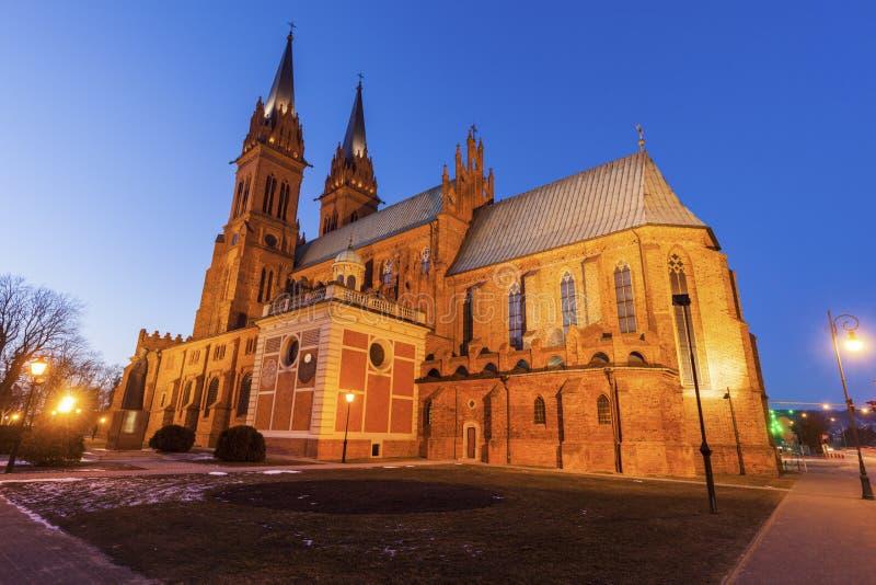 Basilikadomkyrka av St Mary av antagandet i Wloclawek royaltyfri fotografi