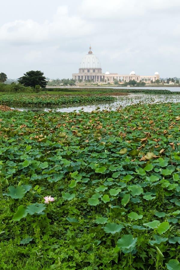 Basilikan av vår dam av fred, Yamoussoukro arkivfoto