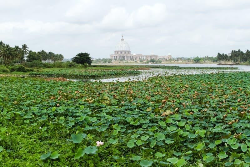 Basilikan av vår dam av fred, Yamoussoukro royaltyfri foto