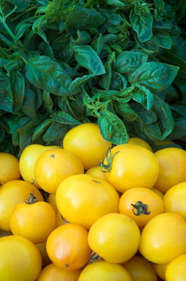 Basilikum u. gelbe Tomaten stockfoto