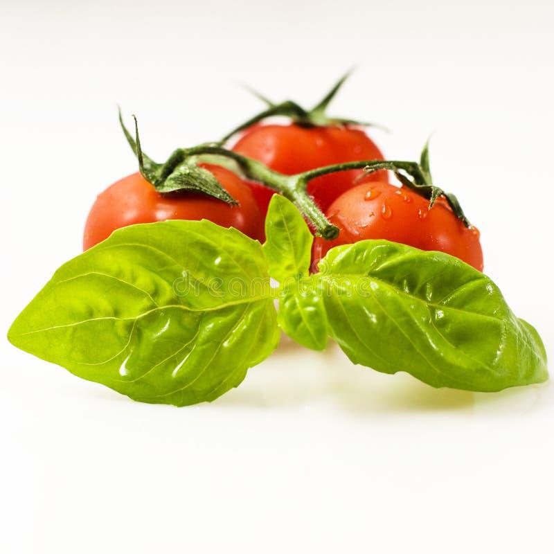 Basilikum und Tomaten lizenzfreie stockfotos