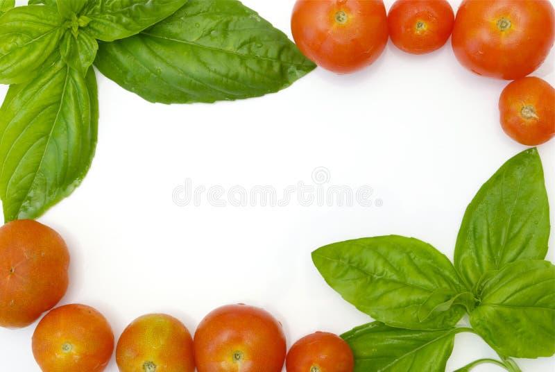 Basilikum- und Tomaterand stockfotografie