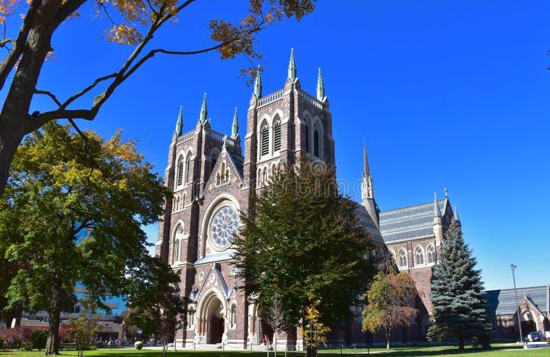 Basilique de la cathédrale de St Peter à Londres, Canada d'Ontario photo stock