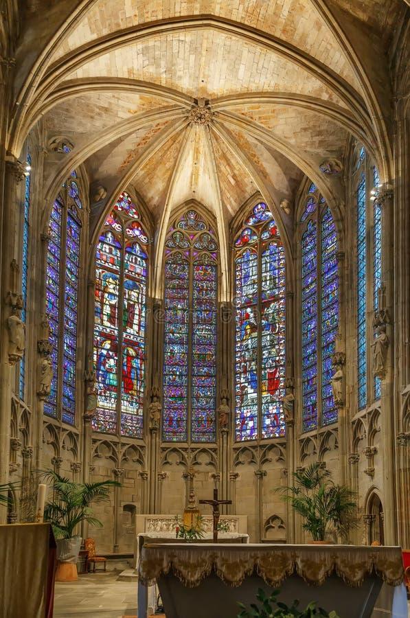Basilique des saints Nazarius et Celsus, Carcassonne, France photos stock