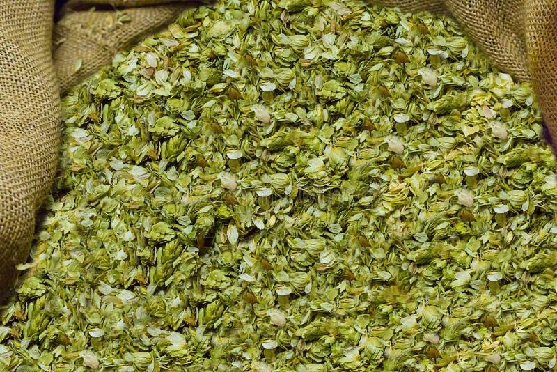 Basis of preparation of beer royalty free stock photo