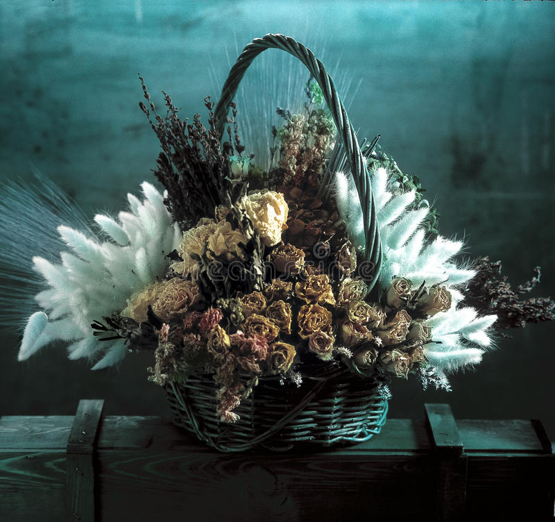 Basked de flores secadas foto de stock royalty free