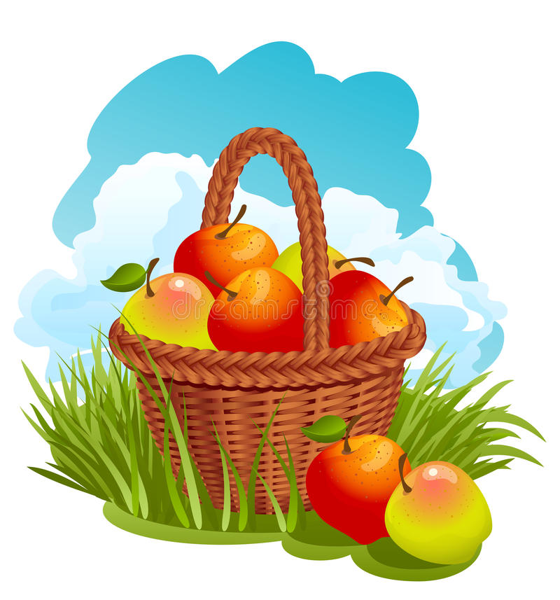 Download Basket with apples stock vector. Image of harvest, illustration - 10433304