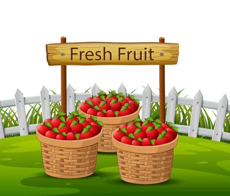 Basket of apples in garden stock illustration