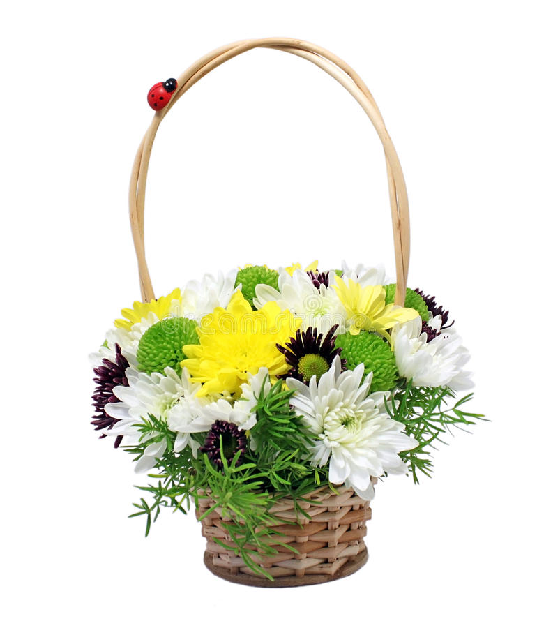 Basket With Asters Royalty Free Stock Image