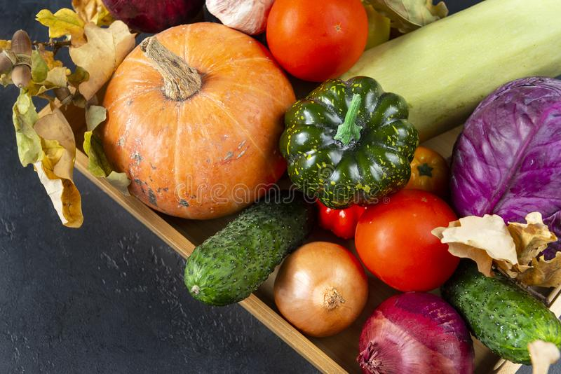 basket with autumn vegetables, pumpkin, zucchini, tomatoes, onion cucumber, cabbage on a black background, royalty free stock images