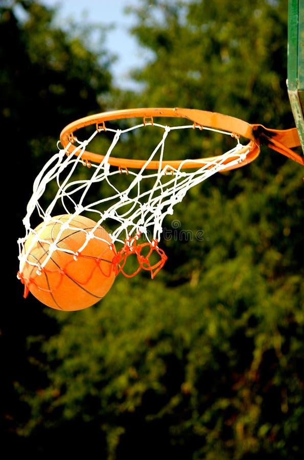 Free Basket Ball Royalty Free Stock Image - 2020106