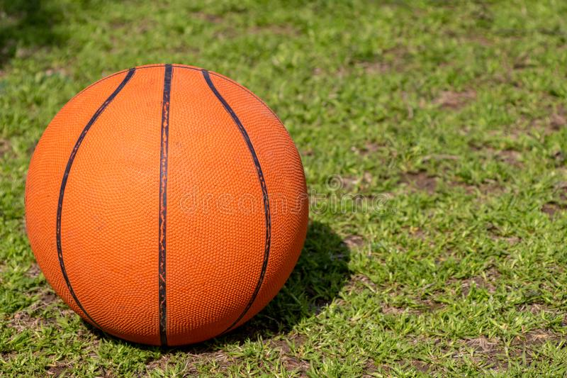 Basket ball. Lying in green grass field stock images