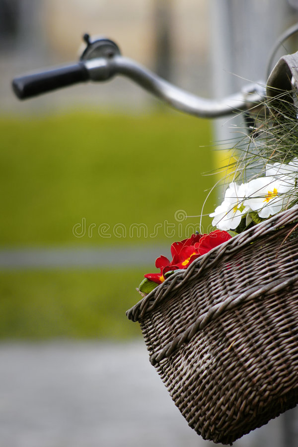 Basket on a bicycle with flowers royalty free stock image