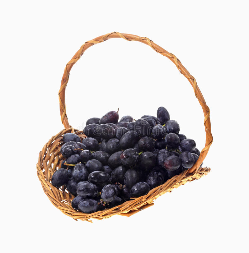 Basket Black Grapes stock photo