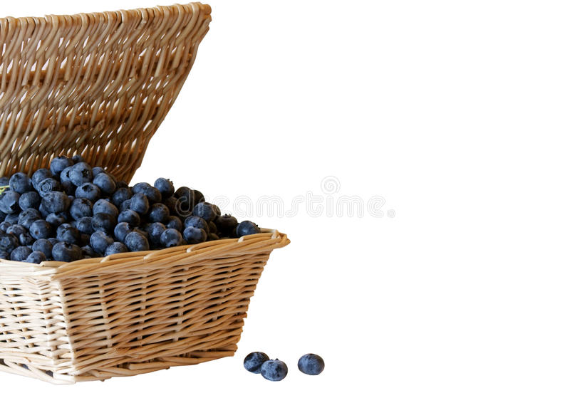 Basket of blueberries royalty free stock images