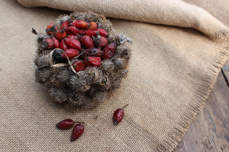 Basket of burdock seeds and rose hips. On sacking background and wooden planks royalty free stock images