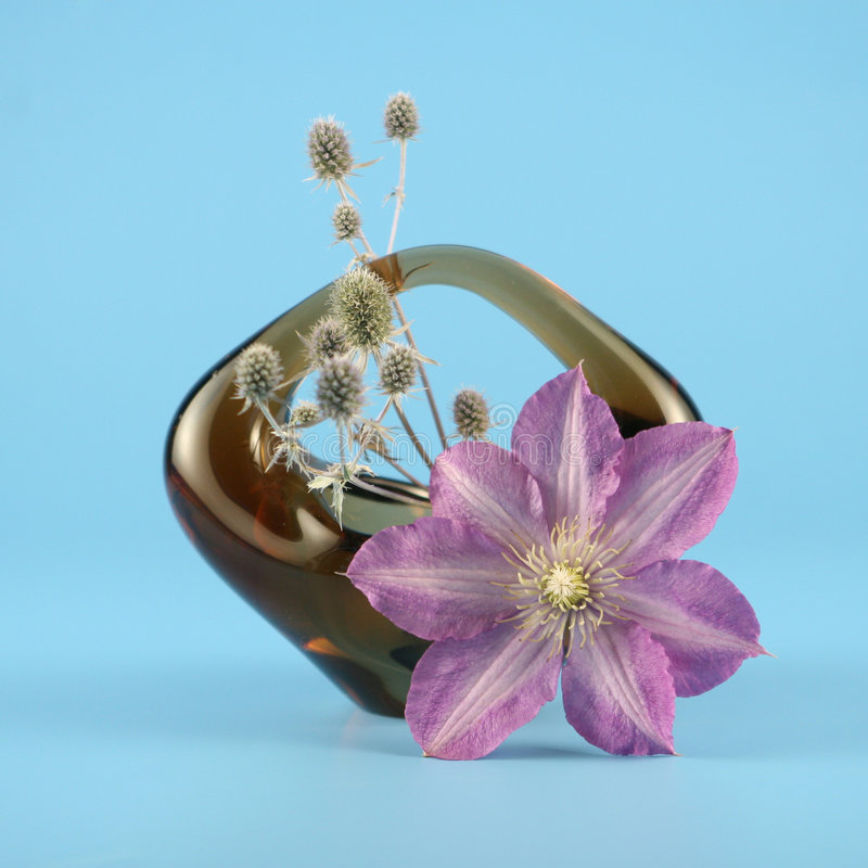 Basket with clematis stock images