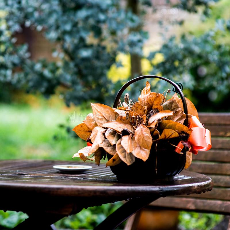 A Basket Of Dead Flowers On A Garden Table. A Basket Of Dead Flowers On A Wooden Garden Table royalty free stock photo