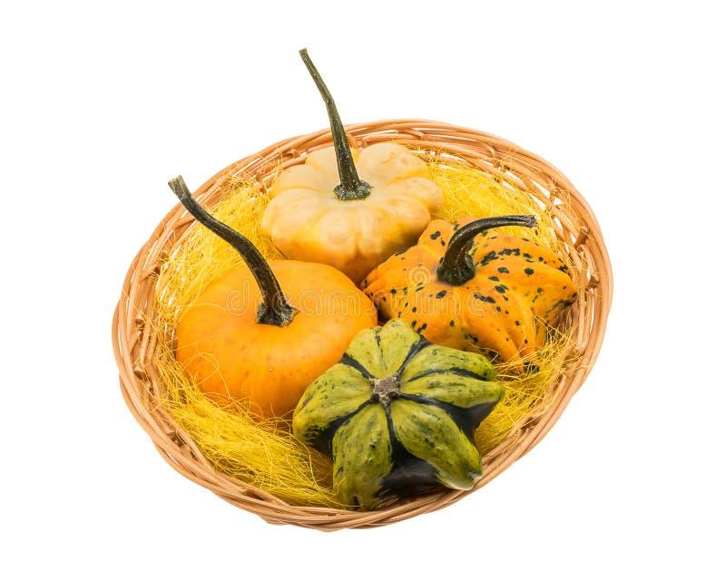 Basket with decorative mini pumpkins royalty free stock photo