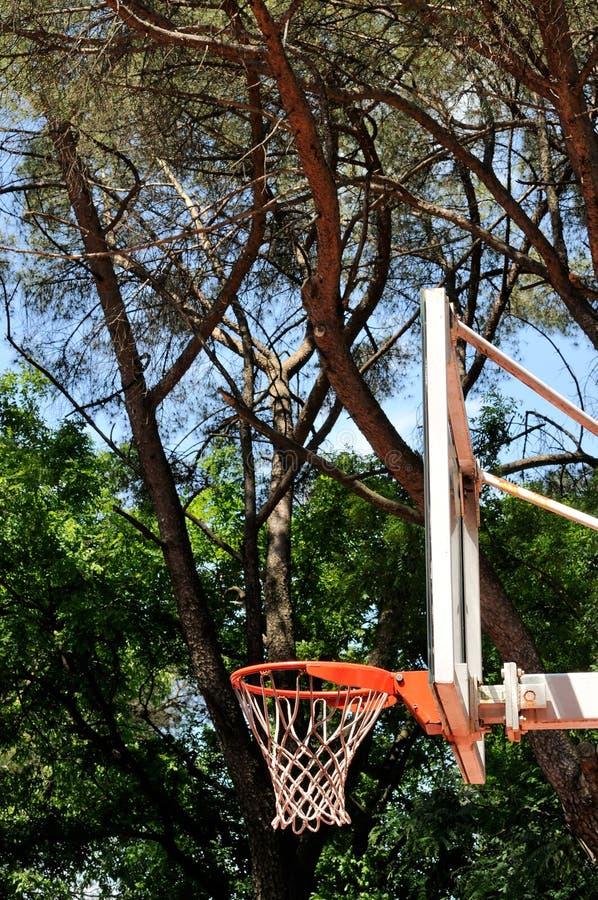 Basket dunk royaltyfri bild
