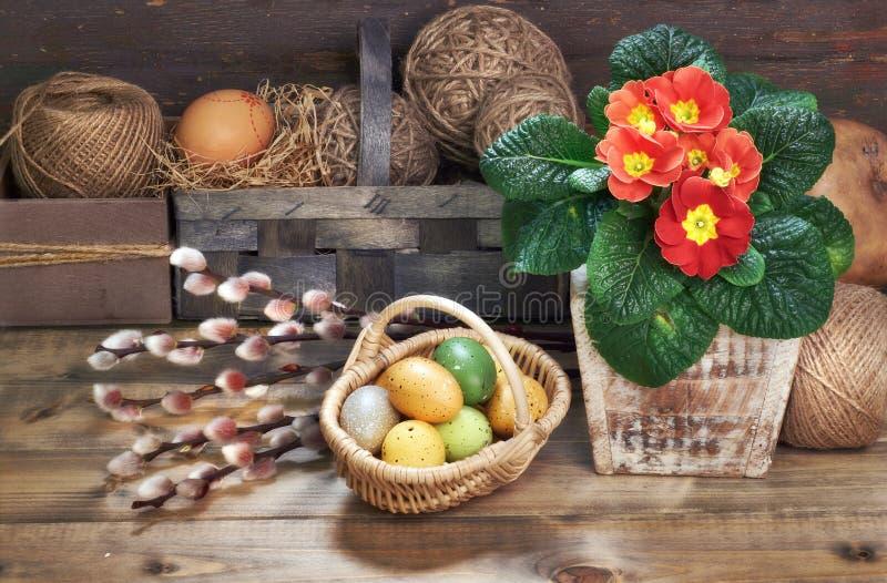 Basket of Easter eggs, red primrose flowers in flower pot on woo stock photos
