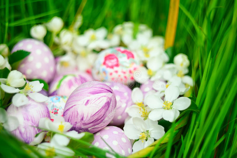 Basket with Easter eggs and spring flowers around. Basket with Easter eggs on a background of green grass and delicate spring flowers branch of apple blossoms royalty free stock image