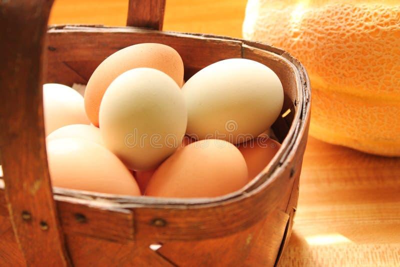 Basket of eggs royalty free stock photos
