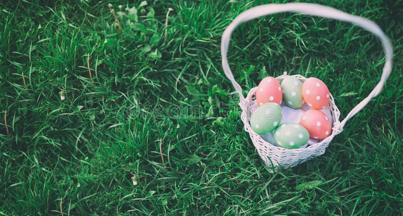 Basket of eggs hand-painted with Hydrangea flower royalty free stock image