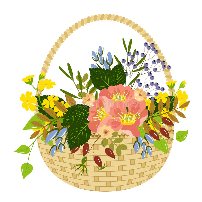 Basket with flowers and berries royalty free illustration