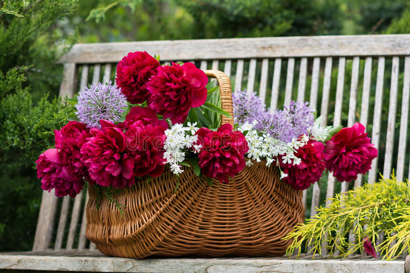 Basket with flowers. stock photos
