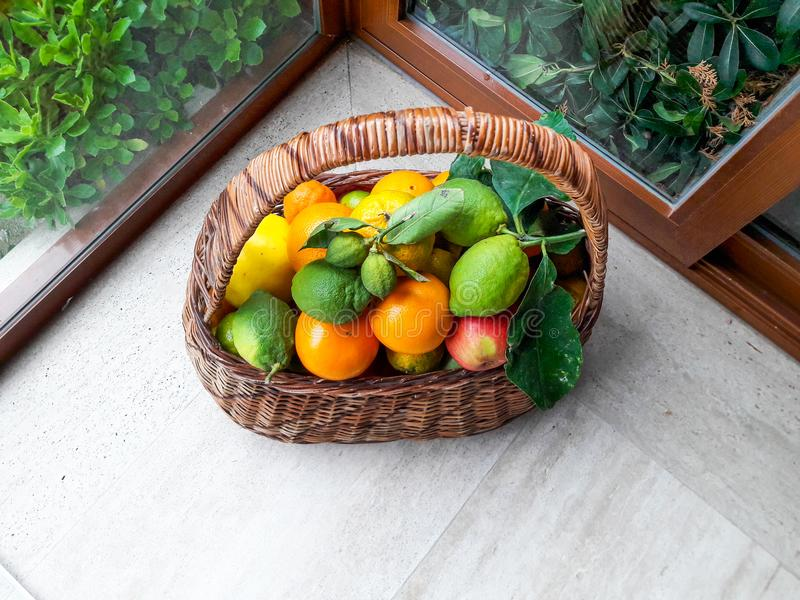 Basket of Fresh Fruits at the Gardens Balcony. Organic Food royalty free stock photography