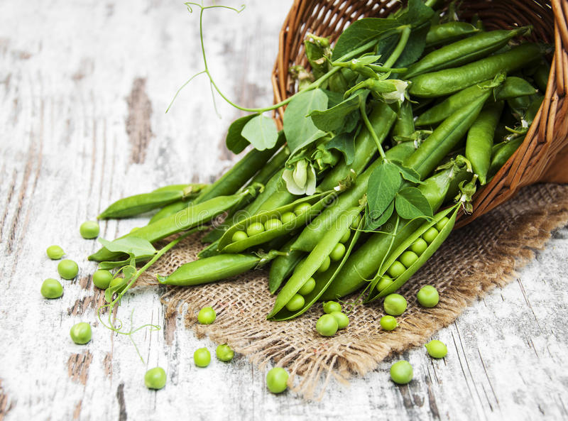 Basket with fresh peas. On a old wooden background royalty free stock photo