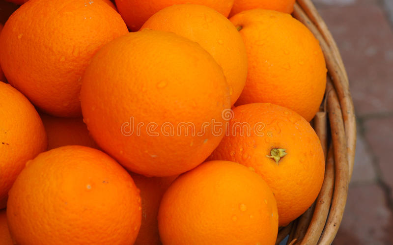 Download A Basket Of Fresh Picked Ripe Juicy Oranges Stock Image - Image of gilbert, round: 88996755