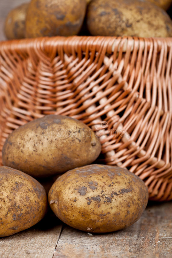 Download Basket With Fresh Potatoes Stock Image - Image: 28051211