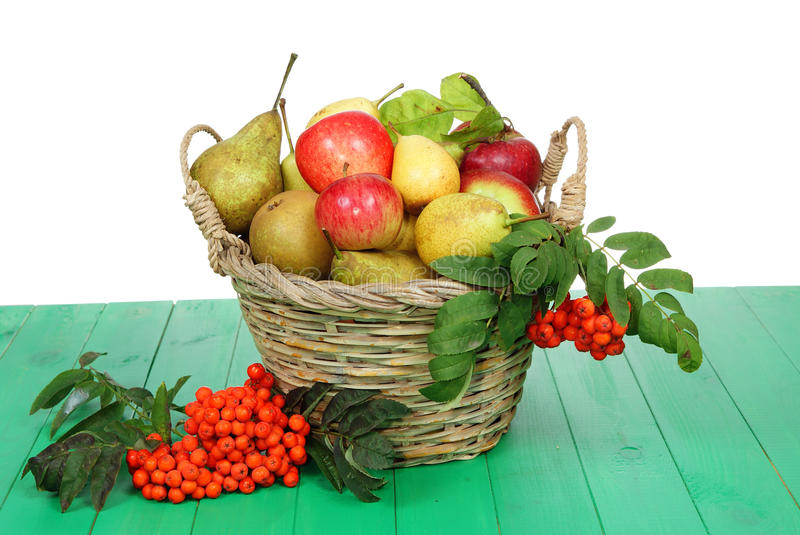Basket of fruit royalty free stock image