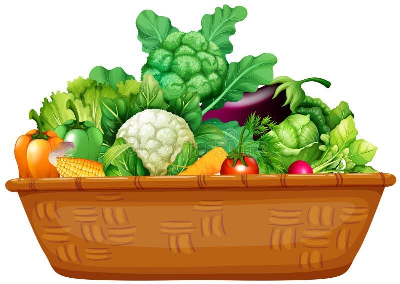 Basket full of fresh vegetables vector illustration