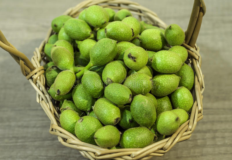 Basket full of green young walnuts in husks on wooden table royalty free stock image